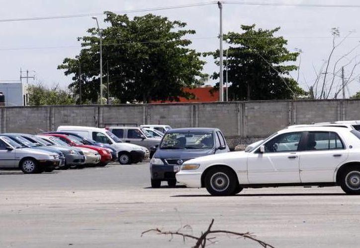 Piden a los vendedores de coches estar muy atentos durante las transacciones que realicen, así como verificar el dinero que reciban. (SIPSE)