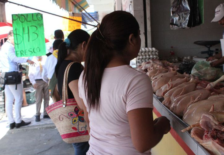 Sólo Campeche está por encima de las cifras de Quintana Roo, en cuanto a embarazos, pues registra 15.7%. (Joel Zamora/SIPSE)
