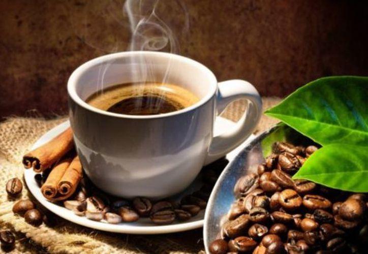 Tomar una taza de café activa la grasa parda, un tejido adiposo con la función contraria a la grasa blanca. (Archivo/Sipse)