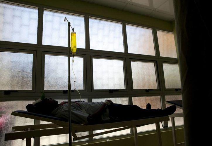 """El chikunguya, transmitido por los mosquitos de la especie """"aedes"""", es una enfermedad viral que se detectó por primera vez en 2013 en el Caribe. (EFE/Archivo)"""