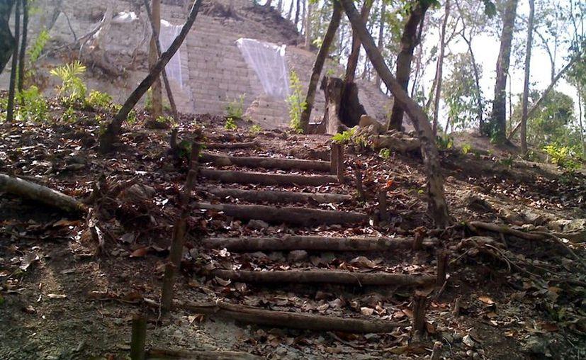 El sitio arqueológico continúa abandonado, pero una carretera facilita el ingreso a cazadores furtivos y a la tala de maderas preciosas. (Juan Carlos Gómez/SIPSE)
