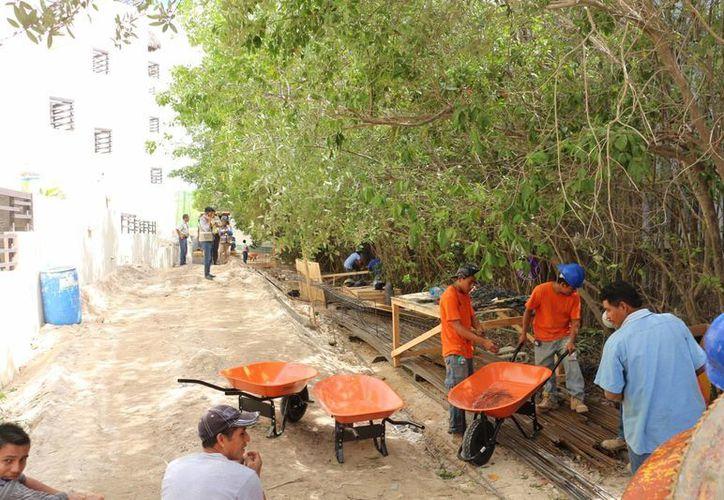 La obra fue inspeccionada por una denuncia anónima que acusaba devastación de manglar. (Adrián Barreto/SIPSE)