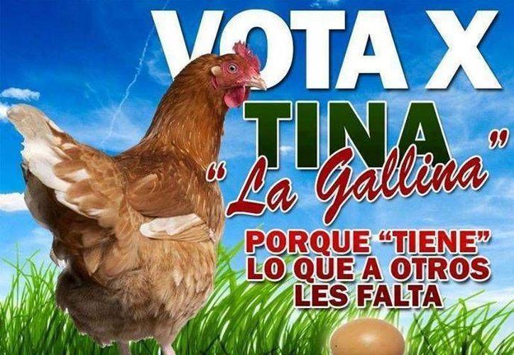 La gallina Tina es uno más de los personajes que poco a poco ganan espacios en la política mexicana. (Facebook)
