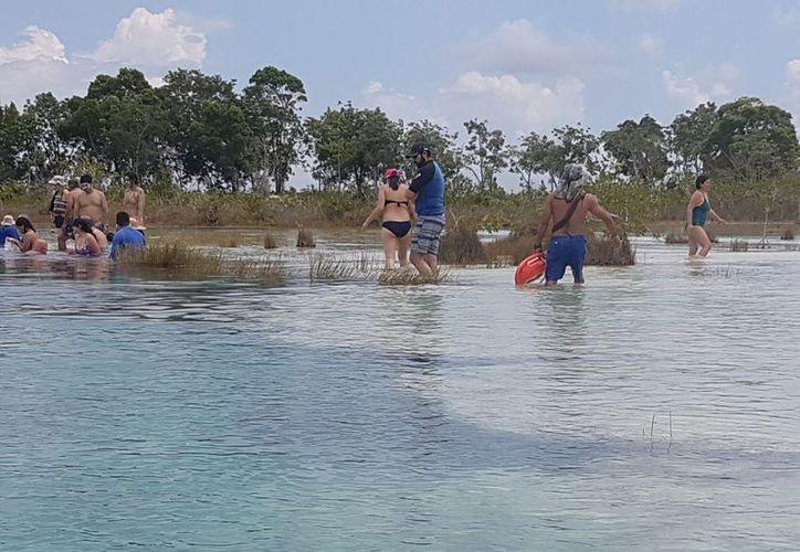 Este miércoles se observó a un grupo de turistas extranjeros caminando por el entorno sin ninguna restricción. (Javier Ortiz/SIPSE)