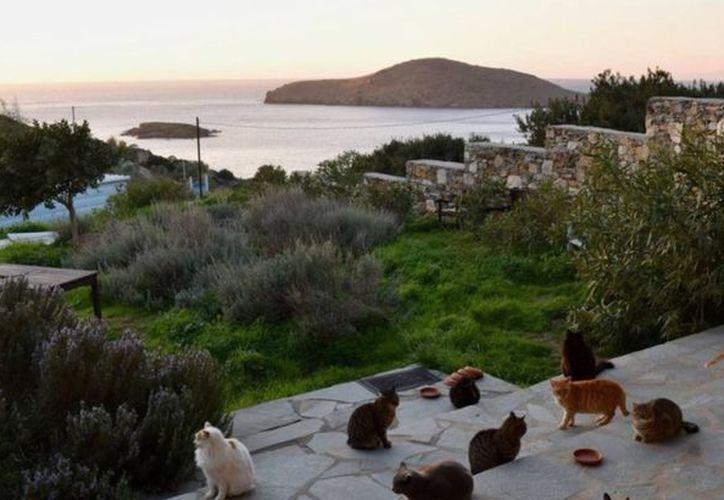El anuncio destaca la ubicación del lugar pues dice que se trata de un lugar tranquilo con vista al mar Egeo. (Facebook)
