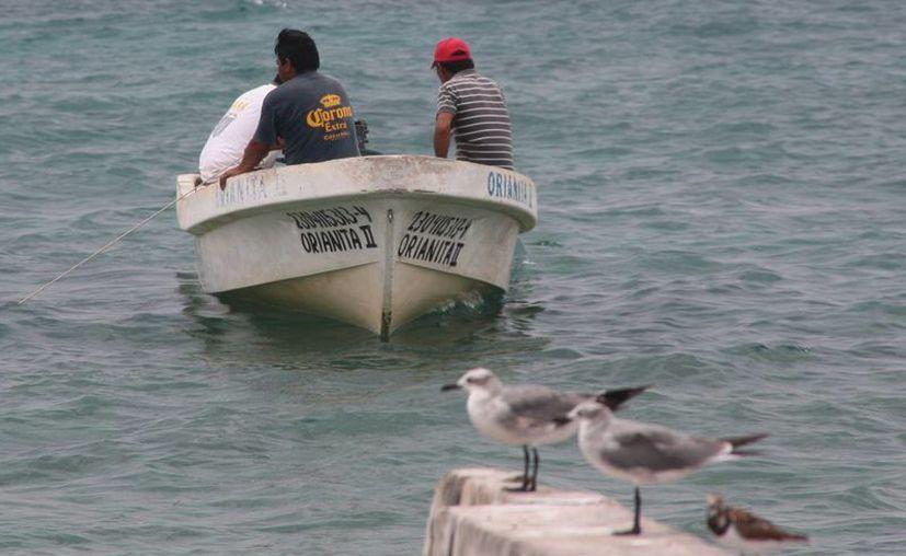 Embarcaciones de la Marina y de pescadores buscan a Gilmer Núñez Azueta, quien se perdió la semana pasada mientras buceaba. (Redacción/SIPSE)