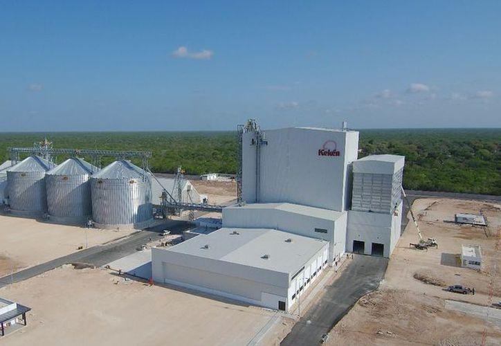 Kekén, empresa de Grupo Kuo, inauguró la primera fase del proyecto porcícola más grande de México. (Milenio Novedades)