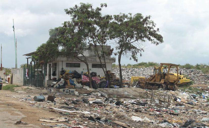 Las autoridades de ecología aseguran que los basureros municipales están sobresaturados. (Harold Alcocer/SIPSE)