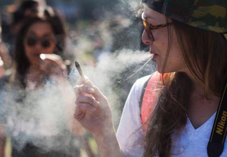 La edad mínima legal para el consumo de cannabis será de 21 años (Foto: AFP)