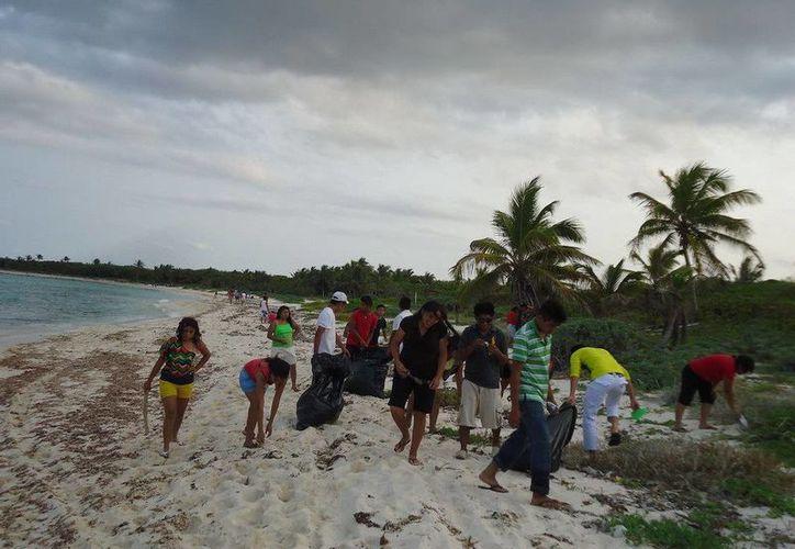 Realizan limpieza en playas previo a la llegada de tortugas. (Cortesía/SIPSE)