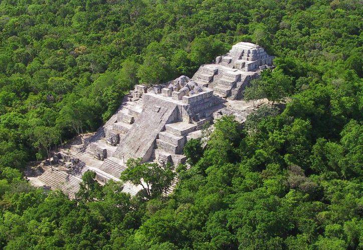 Por ahora, la Reserva de Calakmul, en Campeche, cuenta con la declaratoria federal de Área Natural Protegida, que data de 1989.  (Notimex)