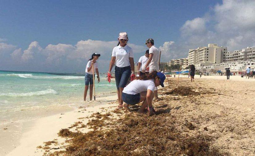 Hasta el momento han iniciado con playa Coral, Delfines, Marlín y Del Niño. (Redacción)