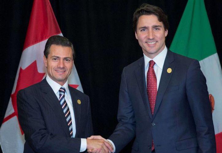 Peña Nieto felicitó a Justin Trudeau por su elección como primer ministro de Canadá. (Notimex)