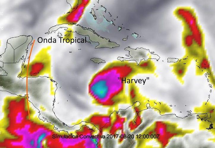 Actualmente 'Harvey' se encuentra a poco menos de dos mil kilómetros de las costas de Quintana Roo. (@MeteorologíaYucatán)