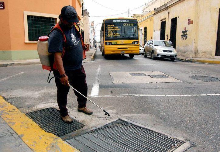 Las acciones de fumigación por parte de las autoridades sanitarias son constantes. (Wilbert Argüelles/SIPSE)