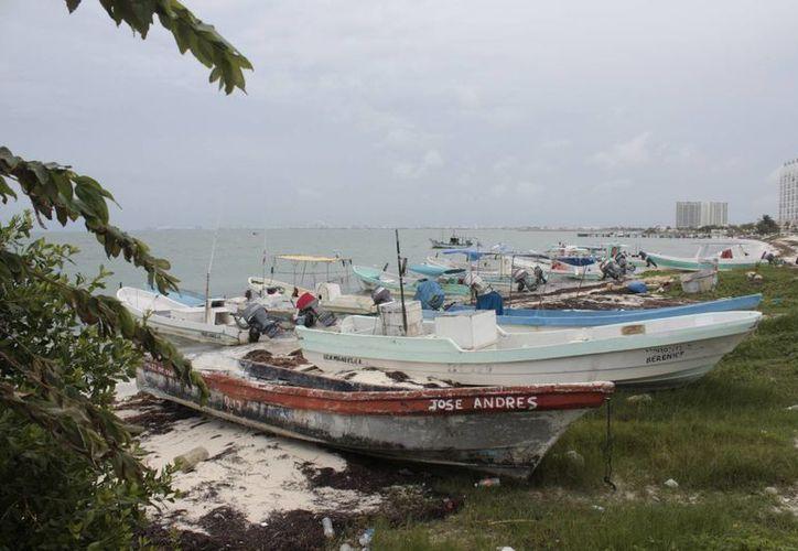 Las embarcaciones que realizan recorridos turísticos podrían utilizar el biodiesel. (Redacción/SIPSE)