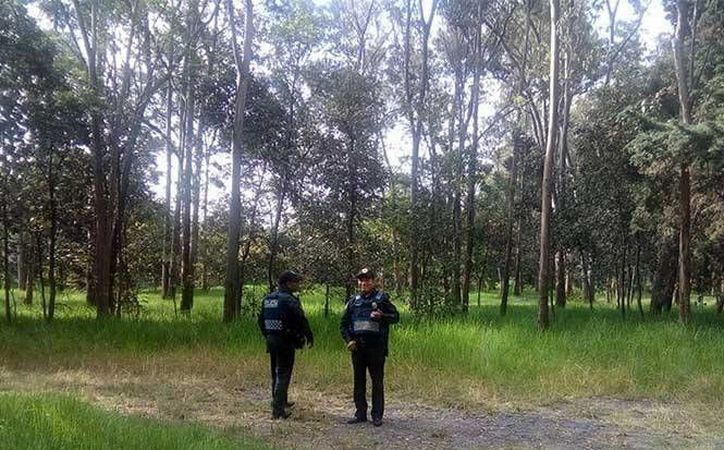 Durante una caminata dentro del parque, integrantes de la asociación de Corredores del Bosque de Tlalpan aseguraron que días antes de la agresión, la mujer había denunciado que un hombre la acosaba. (Fotos: excelsior.com)