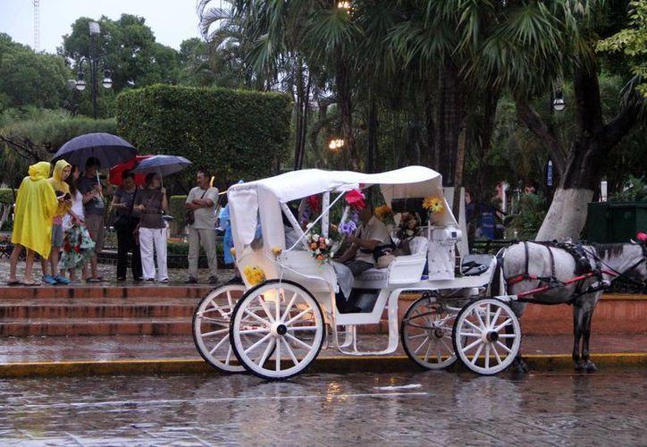 Los dirigentes empresariales planean redoblar la actividad turÍstica. En la imagen, una calandria con turistas en la Plaza Grande de Mérida. (Milenio Novedades)