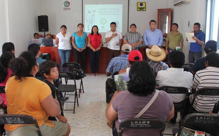 La capacitación fue en la sala de juntas de la Comuna. (Raúl Balam/SIPSE)