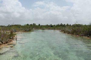 Violan área protegida para atraer turismo