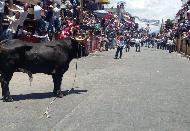 Durante la Huamantlada tauina en Tlaxcala, tres astados se escaparon del circuito por una falla en la organización. Los animales fueron sacrificados para evitar situaciones más graves. (Notimex)