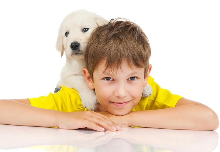 Adopta una mascota y descubre las maravillas que ofrece. (Redacción/SIPSE)
