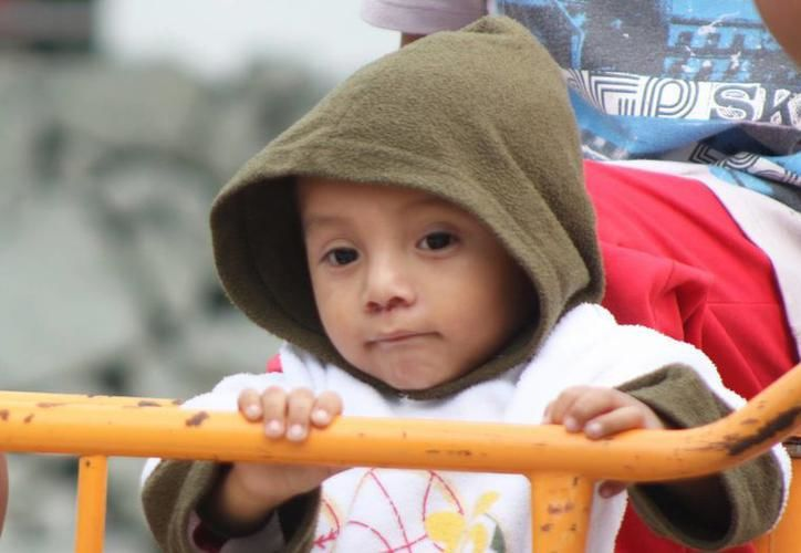 Buscan priorizar los derechos de la niñez temprana y así, solucionar desde la raíz, las problemáticas de impacto social que impiden el crecimiento de México. (Imagen ilustrativa/Milenio Novedades)