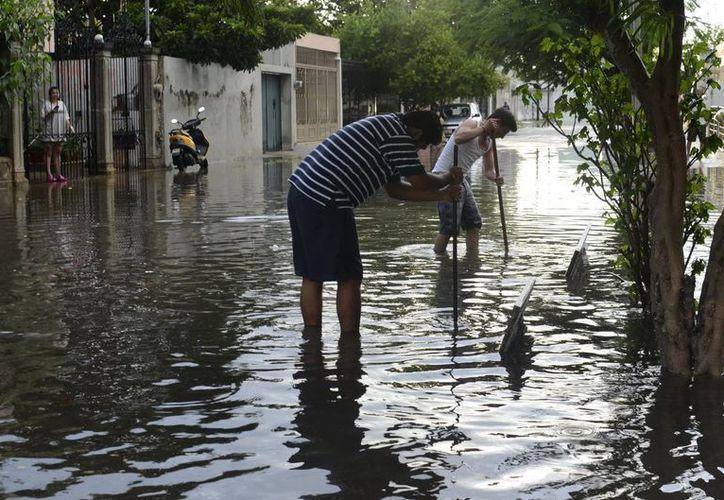 Tan solo en Nayarit, San Blas, Santiago Ixcuintla y Tecuala, fueron declarados en  estado de emergencia. (Notimex)