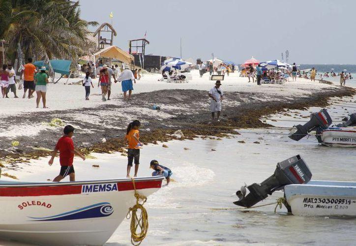 """La playa  """"El Farito"""" sería la elegida para obtener la distinción. (Sergio Orozco/SIPSE)"""