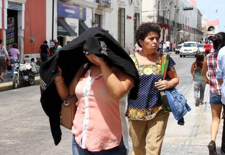 Los intensos rayos del sol que imperan en Yucatán serán aprovechados para producir energía. (Archivo/ Milenio Novedades)