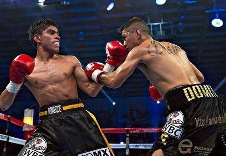 El boxeador Pedro Guevara es considerado un ejemplo para la juventud 'por sus éxitos, tanto en el deporte como a nivel académico'. (Mexsports.com)
