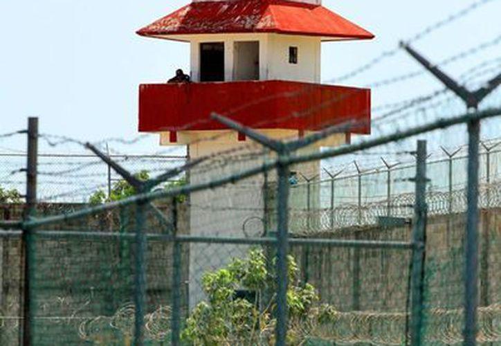 Dieciocho internos de la cárcel de Playa del Carmen crearán huertos de traspatio en dicho recinto. (Daniel Pacheco/SIPSE)