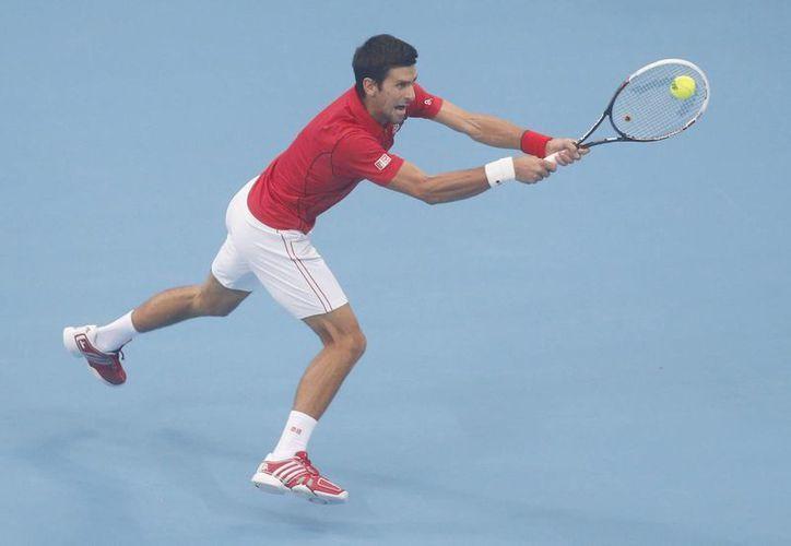 Con este triunfo, 'Nole' suma 500 puntos en el ranking de la ATP. (EFE)