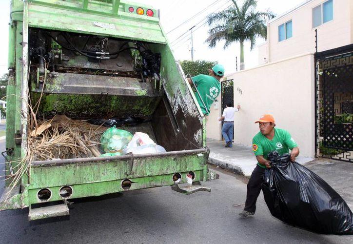 La falta de recolección de basura se aprecia sobre todo en la calle 51 entre 18 y 16, del fraccionamiento Fidel Velázquez. (Milenio Novedades)
