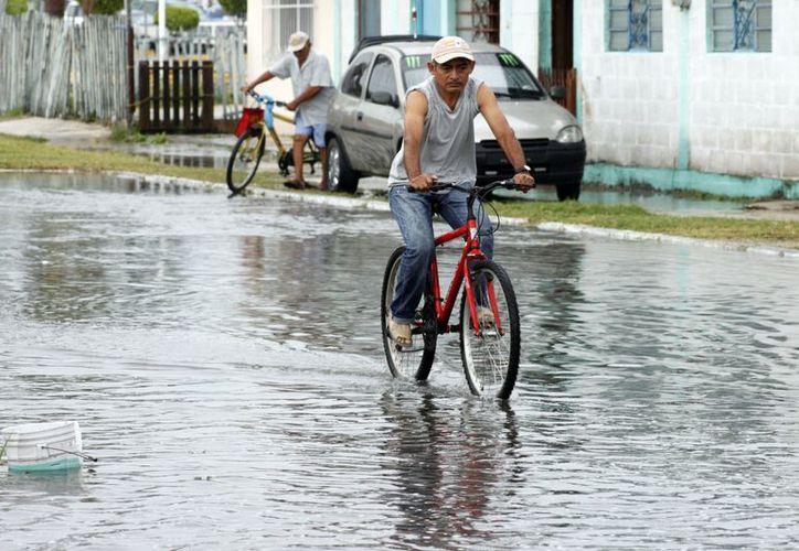 Aunque para muchos capitalinos la lluvia fue perjudicial, para otros representó una esperanza de buenos tiempos. ( Francisco Sansores/SIPSE)