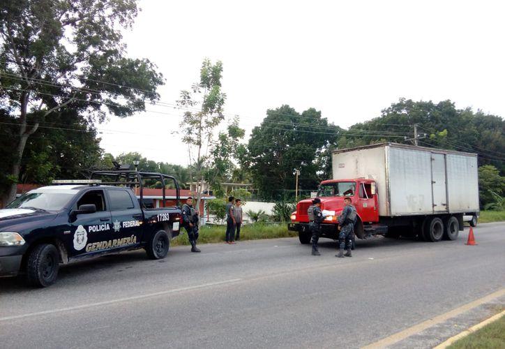 Camiones pesados son inspeccionados en el sur de Quintana Roo para desalentar el tráfico ilegal de madera. (Enrique Mena/SIPSE)