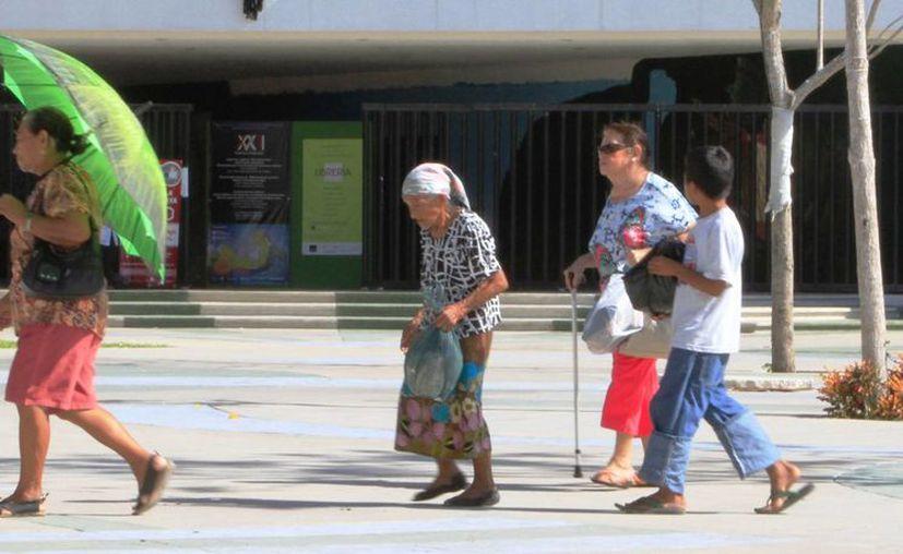 La Comisión de Derechos Humanos atendió cinco quejas por concepto de derechos indígenas. (Ángel Castilla/SIPSE)