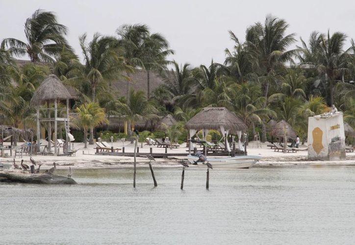 El desarrollo, Holbox Reality, se ubicaría en una dimensión de 19 mil metros cuadrados, rodeada de manglar. (Tomás Álvarez/SIPSE)