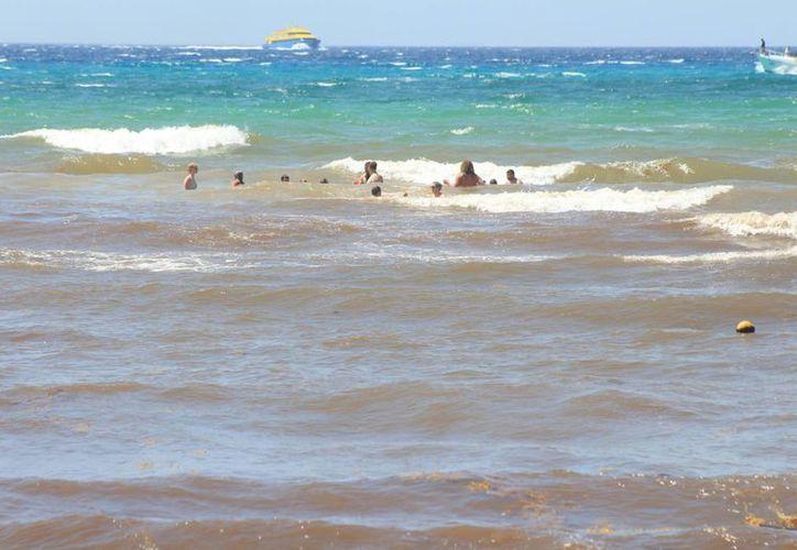 Los prestadores de servicios acuáticos temen que el sargazo opaque su actividad durante el verano. (Adrián Barreto/SIPSE)
