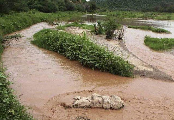 Se informó que las personas que resultaron enfermas por la contaminación de los ríos Bacanuchi y Sonora serán monitoreados por 15 años. (Archivo/AP)