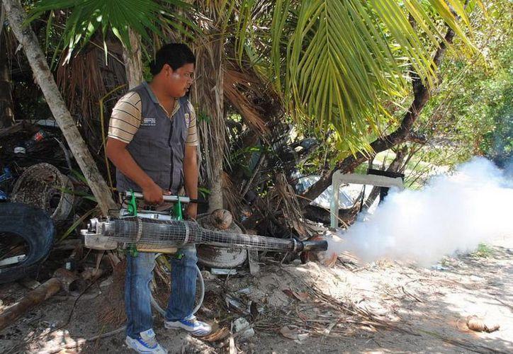 Prevenir ciertos lugares se conviertan en criaderos potenciales del mosquito. (Redacción/SIPSE)