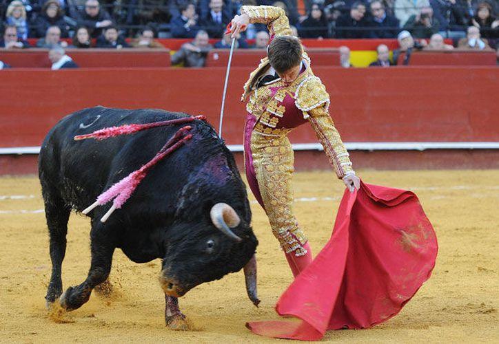 La ley  prohíbe herir y matar a los toros y solo permite utilizar el capote y la muleta. (Contexto/Internet).