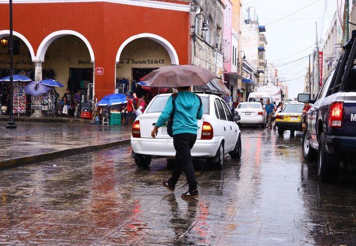 (Foto: Jorge Acosta/SIPSE)