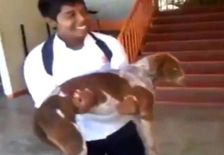 Héctor Tránsito Mondragón es el nombre del alumno que maltrató al perro. (Foto: Youtube)