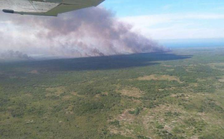 En el combate de los recientes tres incendios atípicos, Yucatán recibió apoyo de la Marina con el helicóptero y el helibalde de 2800 litros de capacidad. (SIPSE)