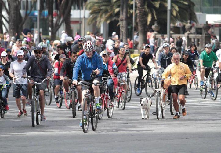 Ejercitarse en bicicleta es una de las actividades más recomendadas para mantener una buena salud. Imagen de gente paseando en bicicleta en la ciudad de México. (Archivo/Notimex)