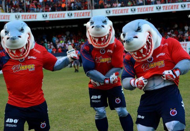 La federación ha iniciado, en coordinación con la Liga MX, una investigación exhaustiva en los registros del club Tiburones Rojos del Veracruz. (Contexto/Internet)