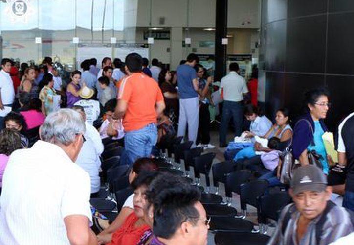 Mucha gente acude a las oficinas de la Agencia de Administración Fiscal de Yucatán para realizar los pagos y ponerse al día. (Milenio Novedades)