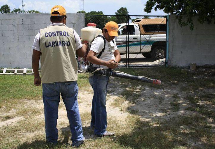 Autoridades recomiendan a la población sacar los cacharros de las viviendas para evitar criaderos de moscos. (Gerardo Amaro/SIPSE)