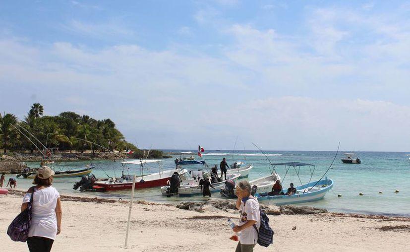 Ambientalistas consideran necesario moderar la explotación turística de los atractivos del municipio, para evitar suspensiones como la que ocurrió con el nado con tortugas. (Sara Cauich/SIPSE)